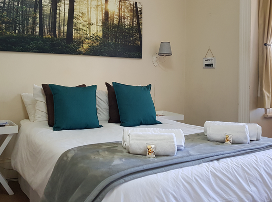 Cape Robin-Bed and Breakfast_Guesthouse_Accomadation_Greytown_Room1